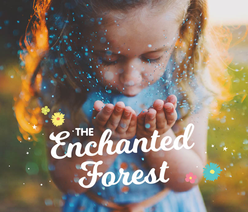 Arana Enchanted Forest_404x346